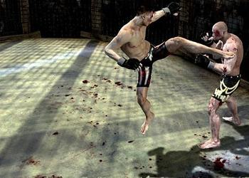 Снимок экрана Supremacy MMA