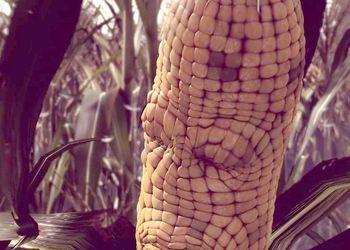 В игре Maize ученые создали разумную кукурузу и русского медведя-робота