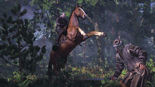 Размещены компоненты игры «Ведьмак 3: Одичавшая Охота»