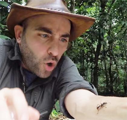 Экстремал испробовал насебе самый больной укус насекомого