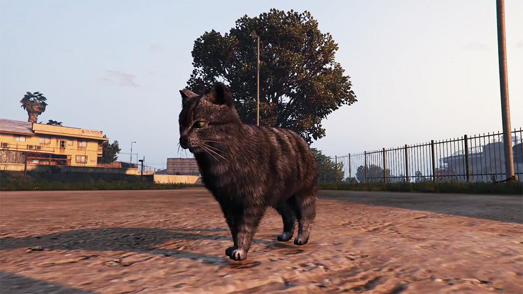 Игроки GTA V могут попробовать себя в роли собаки, курицы, свиньи и других животных
