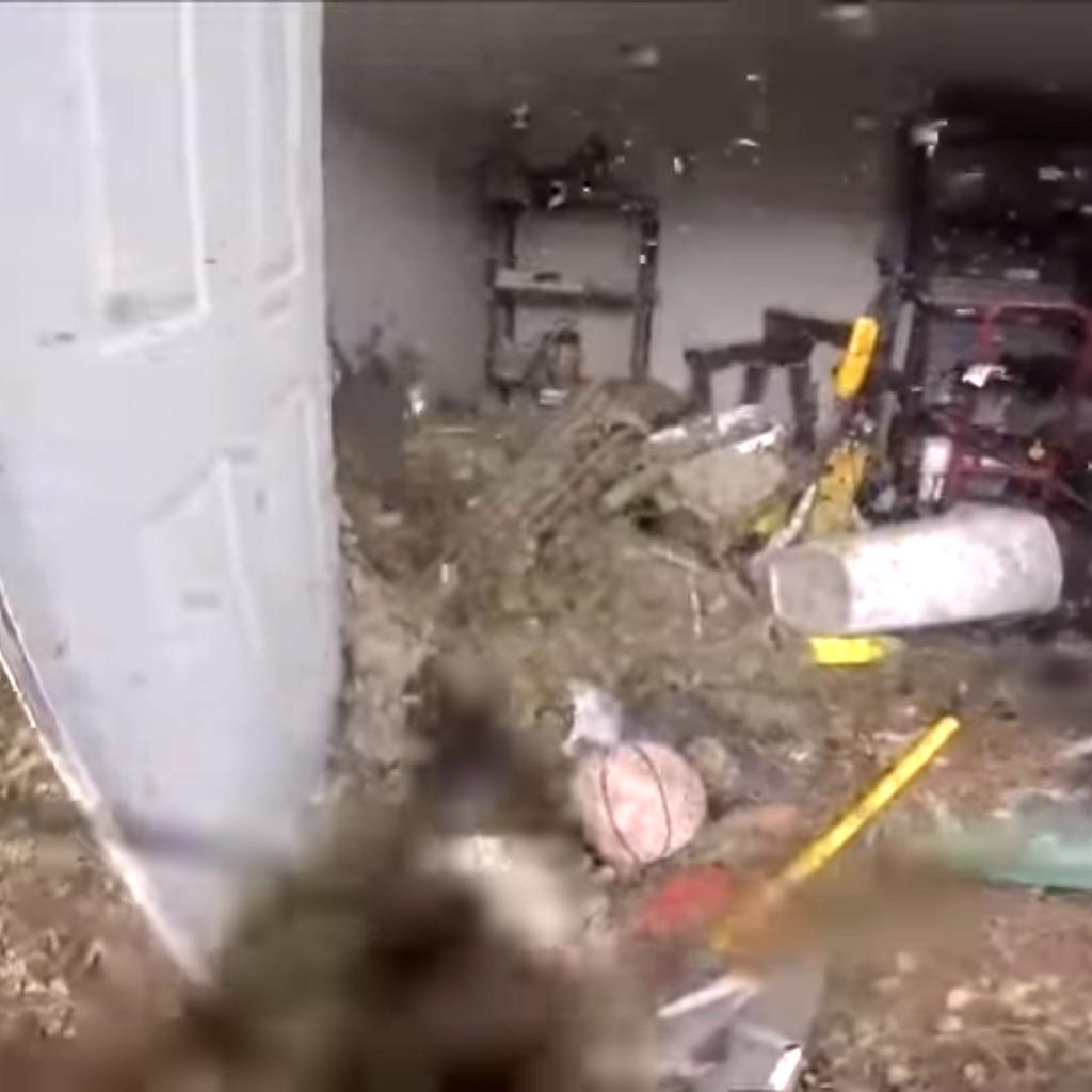 ВСША сняли навидео разрушение огромного осиного гнезда