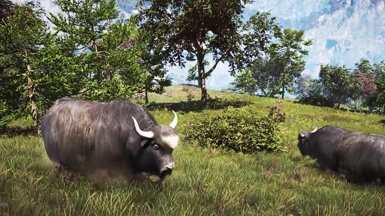 РС версию игры Far Cry 4 в ближайшее время снабдят технологией обработки волос и шерсти Nvidia