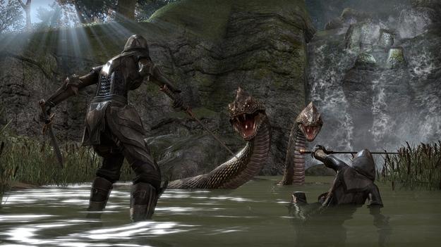 Создатели The Elder Scrolls On-line разграничат игроков на Xbox One, PlayStation 4 и РС
