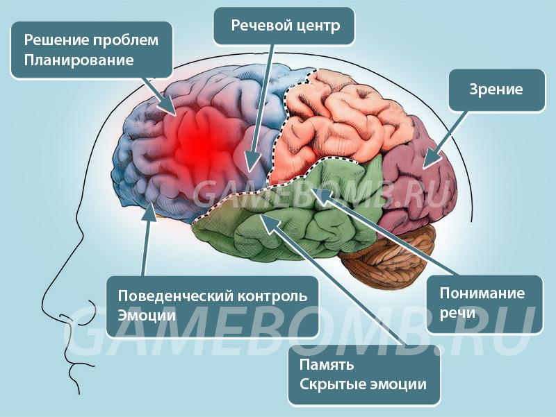 Видеоигры вызывают солидные поражения головного мозга