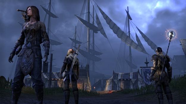 Герои игры The Elder Scrolls On-line сумеют делать разные функции